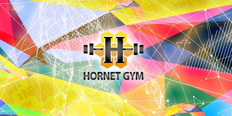 HORNET GYM